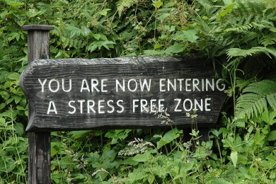 stress/estresse