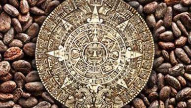 História chocolate brotando consciência