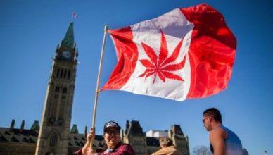 Canadá legalizou cannabis